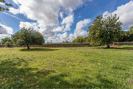 Image 2 | Plot of land for sale with 3.7 hectares of land, Consell, Central Mallorca, Mallorca 186375