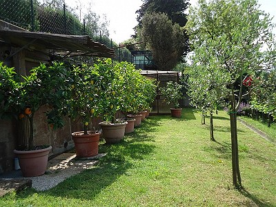 Image 5   3 bedroom house for sale with 0.25 hectares of land, Gambassi Terme, Florence, Chianti 186595