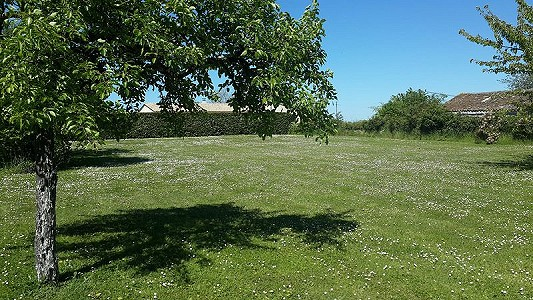 Image 4 | 4 bedroom house for sale with 0.45 hectares of land, Chateauneuf sur Charente, Charente , Poitou-Charentes 186691
