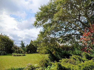 Image 25 | 2 bedroom villa for sale with 1,800m2 of land, Caldas da Rainha, Leiria, Costa de Prata Silver Coast 186727