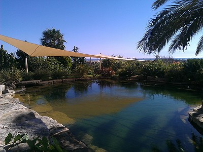 Image 5 | 4 bedroom villa for sale with 0.88 hectares of land, Gale, Central Algarve, Algarve 187499