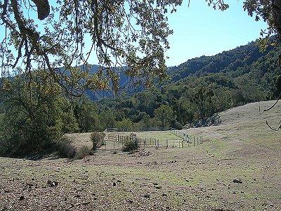 Image 17   Beautiful Vineyard Estate in California set in 1,000 Acres in the Carmel Valley 187502