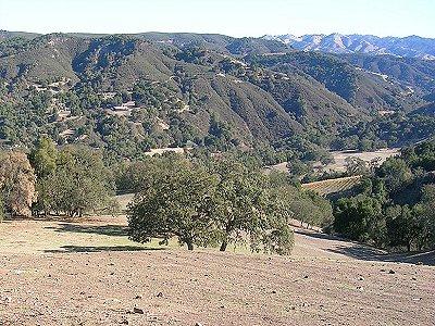 Image 21   Beautiful Vineyard Estate in California set in 1,000 Acres in the Carmel Valley 187502