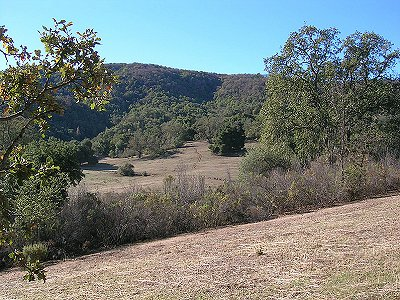 Image 22   Beautiful Vineyard Estate in California set in 1,000 Acres in the Carmel Valley 187502