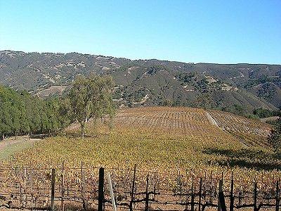 Image 24   Beautiful Vineyard Estate in California set in 1,000 Acres in the Carmel Valley 187502
