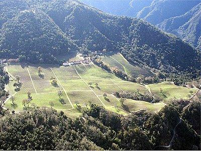 Image 27   Beautiful Vineyard Estate in California set in 1,000 Acres in the Carmel Valley 187502