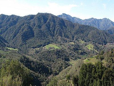 Image 28   Beautiful Vineyard Estate in California set in 1,000 Acres in the Carmel Valley 187502