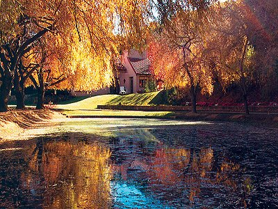 Image 29   Beautiful Vineyard Estate in California set in 1,000 Acres in the Carmel Valley 187502