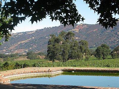 Image 36   Beautiful Vineyard Estate in California set in 1,000 Acres in the Carmel Valley 187502