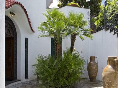 Image 11   7 bedroom villa for sale with 1,500m2 of land, Ischia, Naples, Campania 187519