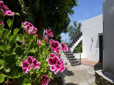 Image 13   7 bedroom villa for sale with 1,500m2 of land, Ischia, Naples, Campania 187519
