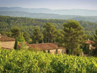 Luxury Country Estate with Vineyard and Equestrian  Facilities in the South of France.