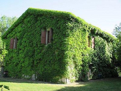 4 bedroom farmhouse for sale, Chiusi, Perugia, Umbria