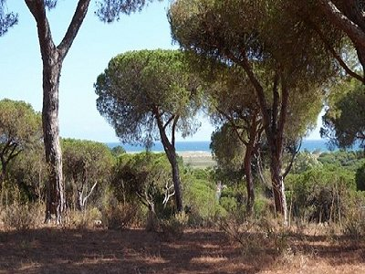 Plot of land for sale, Praia do Ancao, Faro, Algarve