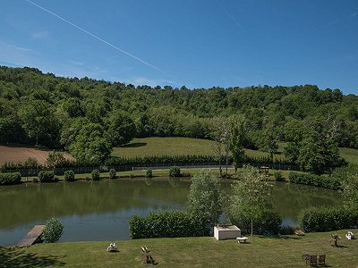 Image 24 | 9 bedroom French chateau for sale, Pau, Pyrenees-Atlantique, Aquitaine 200588