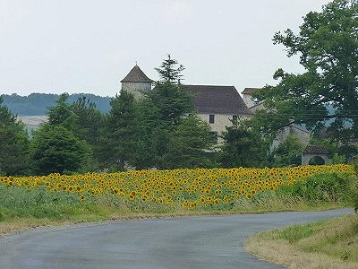 6 bedroom French chateau for sale, Bergerac, Dordogne, Aquitaine
