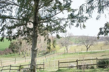 5 bedroom farmhouse for sale, Castelsagrat, Tarn-et-Garonne, Midi-Pyrenees