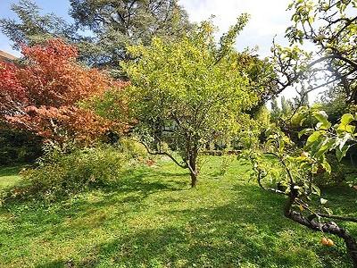 Plot of land for sale, Cologny, Cologny, Geneva, Lake Geneva