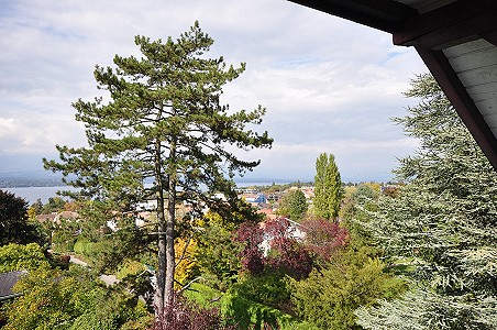 4 bedroom house for sale, Cologny, Cologny, Geneva, Lake Geneva