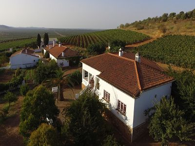 Superb Estate for sale in South Portugal with vineyards, olive groves and potential income from extensive accommodation
