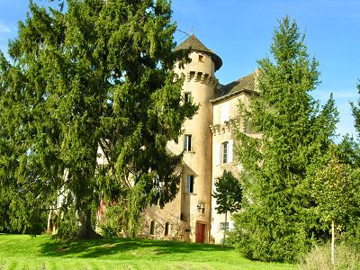 14 bedroom French chateau for sale, Decazeville, Lot, Midi-Pyrenees