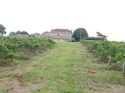 6 bedroom farmhouse for sale, Blaye, Gironde, Aquitaine
