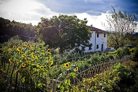 Image 5 | 12 bedroom hotel for sale with 6 hectares of land, Montegabbione, Terni, Umbria 204452