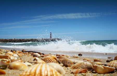 Faro Algarve shoreline near Prestige Property Group