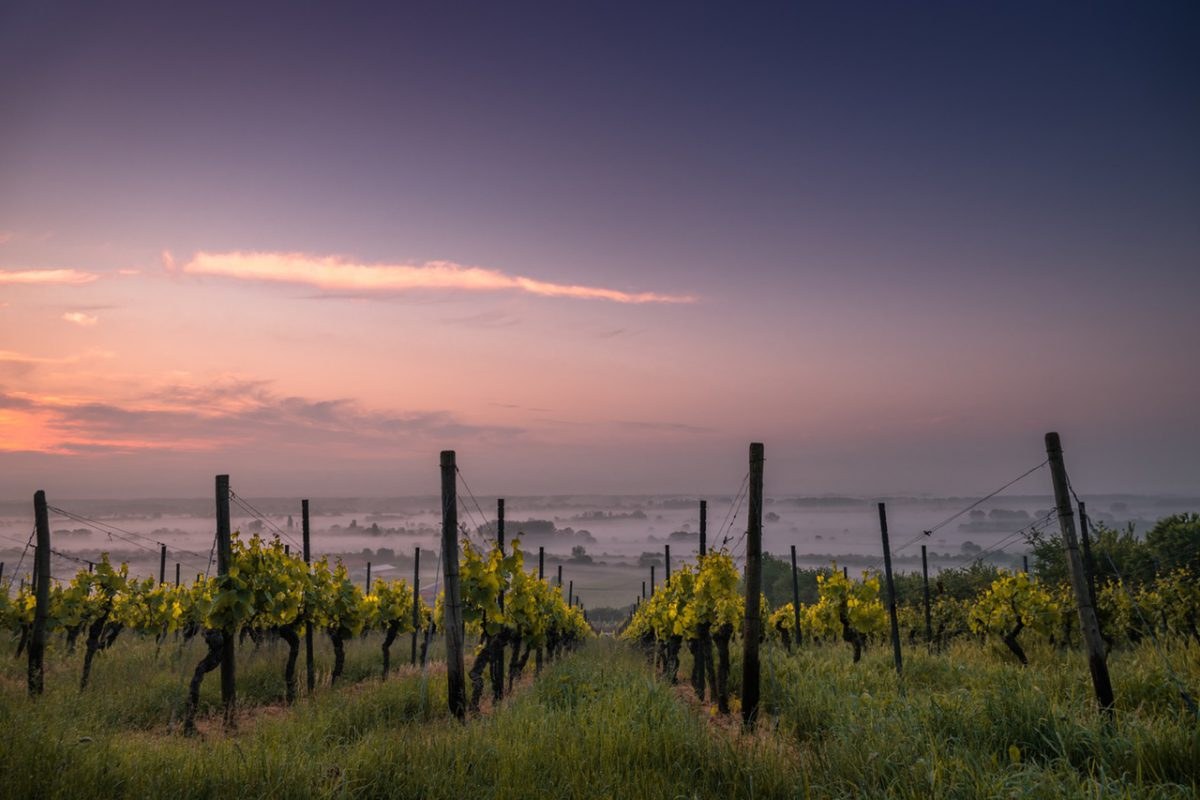 The main reasons to invest in Tuscan property
