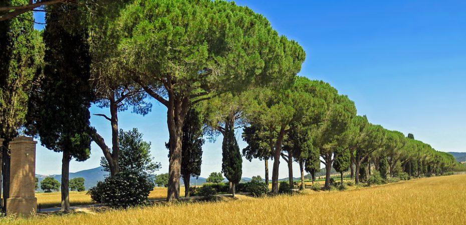 Tuscany landscape near Prestige Property Group