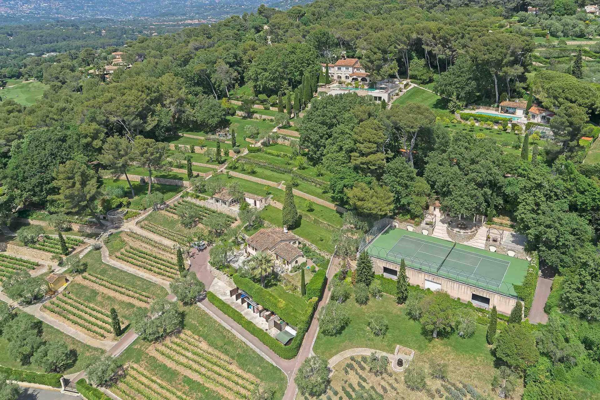11 bedroom house for sale Mougins, Provence, France, Vineyard