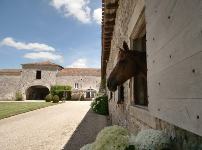 Equestrian property for sale in Charentes