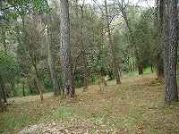 Plot of land for sale, Mougins, Provence...